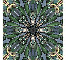 Digital Flower Photographic Print