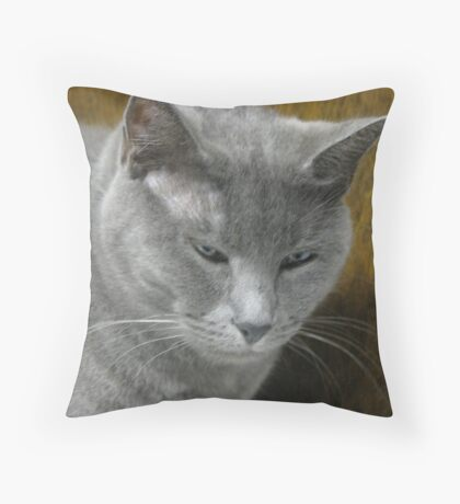 Silverwolf Throw Pillow