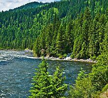 Gravey Creek entering the Lochsa by Bryan D. Spellman
