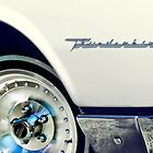 Thunderbird by maxblack