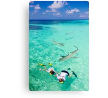Snorkeling with sharks in the Maldives Canvas Print