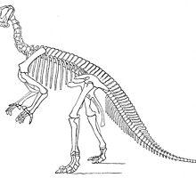 Stupendous Hypsilophodon by skeletonsrus