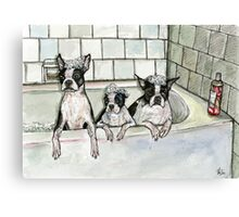 Bathtub Buddies Canvas Print