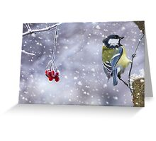 Great Tit Winter Holiday Card - Greeting Card Greeting Card