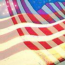 Stars & Stripes by Lenore Senior