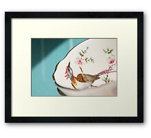Precious, pretty things.... Framed Print