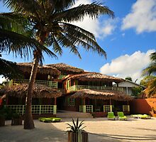 Caye Casa by Robert Case