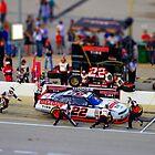 Nascar Miniature by racefan24