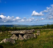 Dartmoor Cist by moor2sea