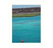 Galapagos Water Art Print