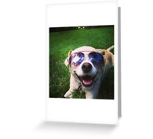 Happiest Dog on Earth Greeting Card