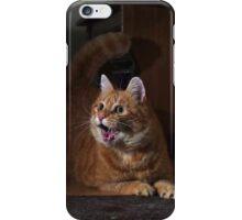 Excited cat iPhone Case/Skin