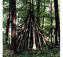 Tree Stack, Montague, New Jersey, 2008 Photographic Print