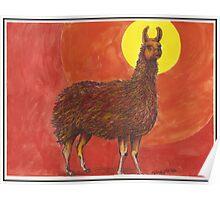 Sun Llama Poster