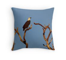 The Sea-eagle And The Peewee Throw Pillow