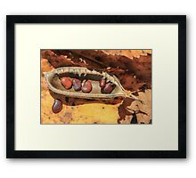 Seed Pod and Fall Colors Framed Print
