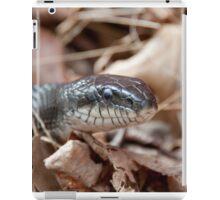 Black Rat Snake in Dead Leaves iPad Case/Skin