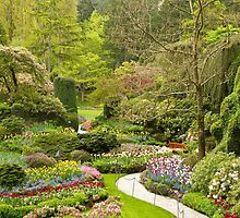 The Butchart Gardens by Ian Robertson