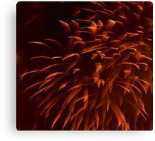 """Ribbon"" Fireworks Canvas Print"