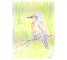Portrait of a bird Poster