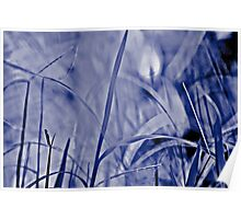 When grasses are blue in my lawn today... Poster