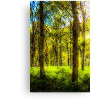The Forest Of Dreams Canvas Print