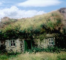 Irish Cottage - Bolus Head, Co. Kerry by Yvonne North Moorhouse