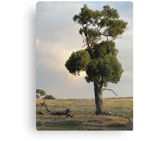 Just me and myself. Canvas Print