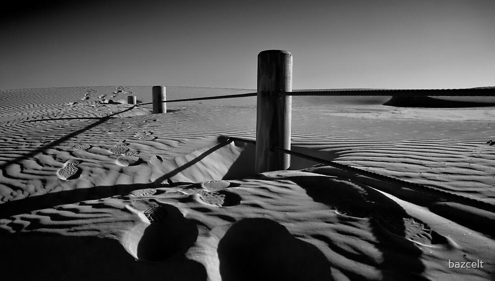 Fenceline to Oblivion by bazcelt