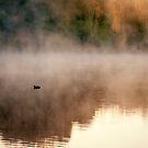 Lonely - Lake Daylesford by Hans Kawitzki