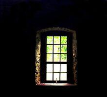 Light in the window.....  by DaveHrusecky