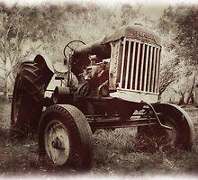 Fordson Tractor by Bronwyn Munro