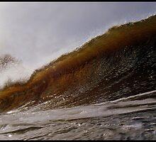 Brown Mersey Barrels by Kyle  Rodgers