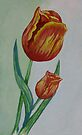 Watercolor Tulips by plunder
