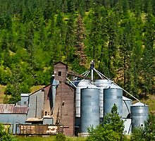 Clearwater River Grain Growers, Idaho by Bryan D. Spellman