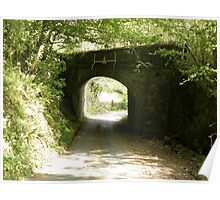 Low Bridge over Country Lane at Lustleigh, nr Newton Abbot Poster