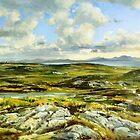 Inishowen Penninsula in County Donegal, Ireland. by conchubar