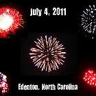 Fireworks by WeeZie