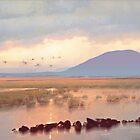 Nephin Dawn, Lough Conn, County Mayo by conchubar