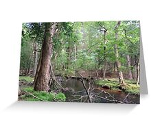 Naturescape 58 Greeting Card