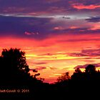 Barstow, FL Sunset by Deb  Badt-Covell