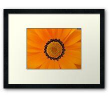 The Colour orange Framed Print