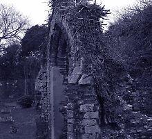 Church Ruins, Hopton on Sea, Norfolk by Teresa Lewis