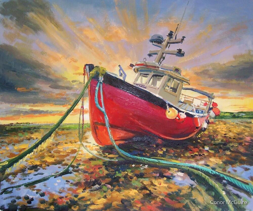 Stranded Boat on seashore, Ireland by conchubar