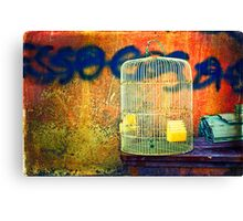 The cage Canvas Print