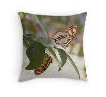 Butterflies on a branch Throw Pillow