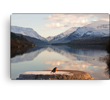 From a robin's point of view Snowdonia Wales Canvas Print