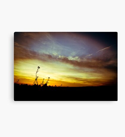 1969, in the sunshine Canvas Print
