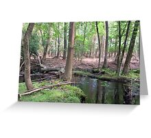 Naturescape 66 Greeting Card