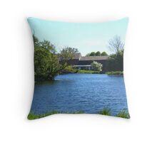 River Lee Throw Pillow